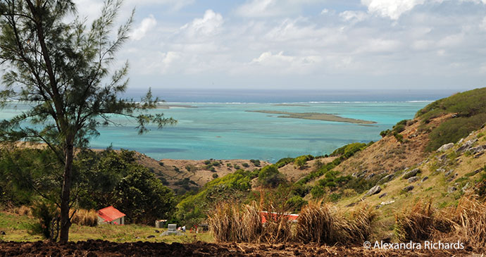 Rodrigues Mauritius by Alexandra Richards