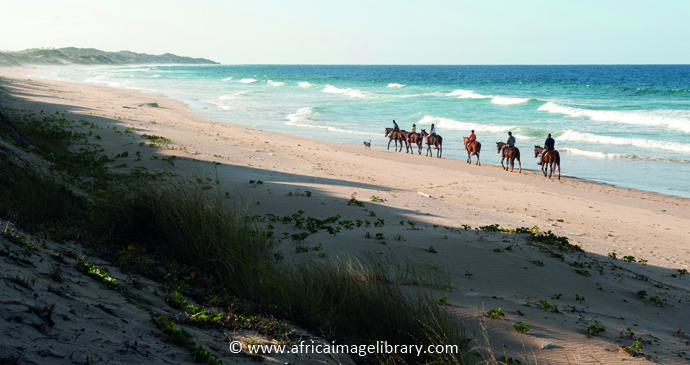 Horseback safaris, Tofo, Mozambique by Ariadne Van Zandbergen, www.africaimagelibrary.com