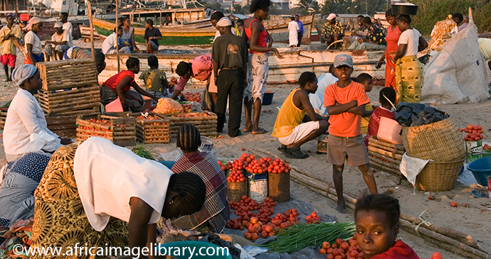 Market Beira Mozambique by Africa Image Library