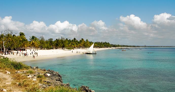 Pangane Beach Mozambique by Alberto Loyo, Shutterstock