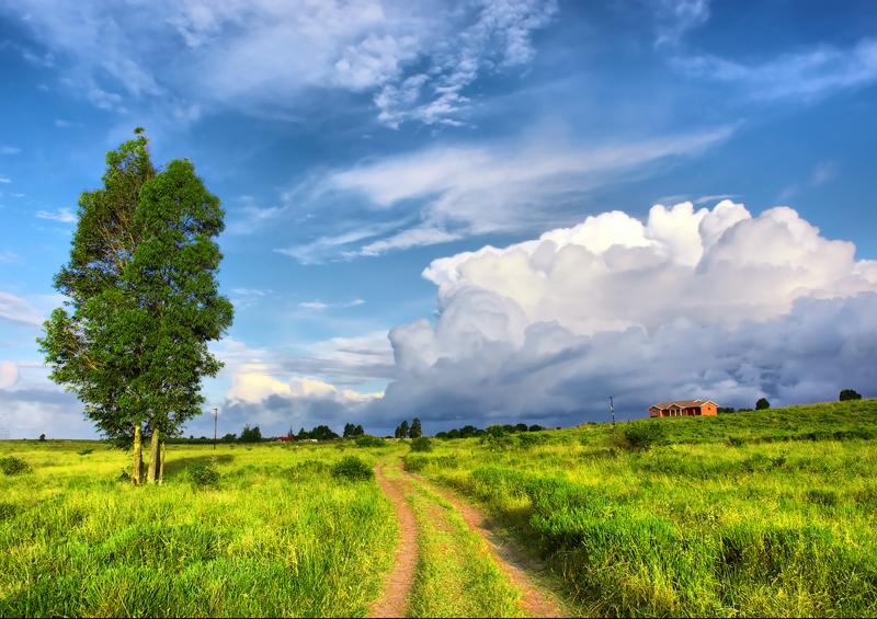 Road near Sodwana Bay Nature Reserve, Mozambique by PhotoSky, Shutterstock
