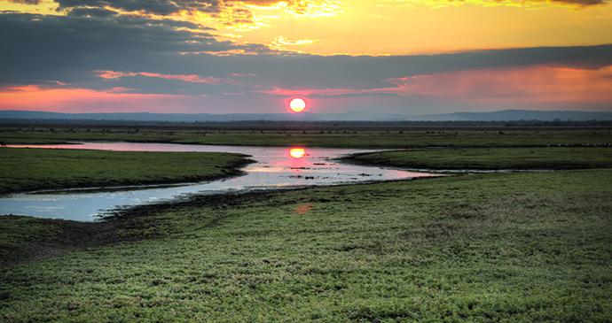 Sunset Gorongosa National Park Mozambique by nicolasdecorte, Shutterstock