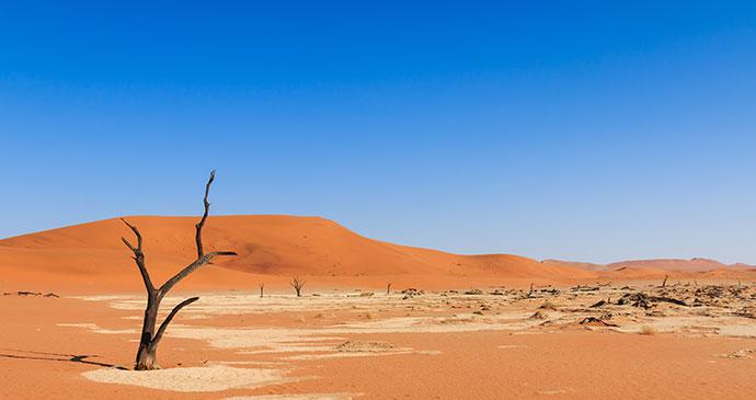 Sossusvlei Namibia by phodo, Shutterstock