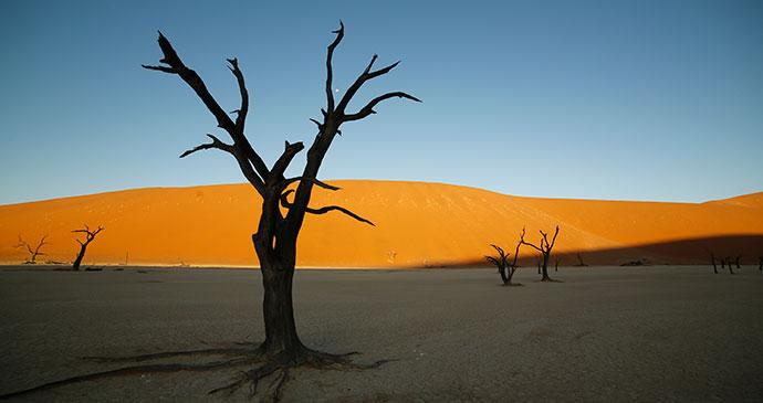 Namib Desert Namibia by Namibia Tourism