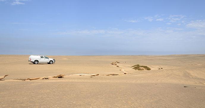 Skeleton Coast Namibia by dconvertini Flickr