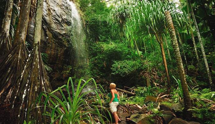 Waterfall Vallee de Mai Praslin Seychelles Gerard Larose by Seychelles Tourism Board