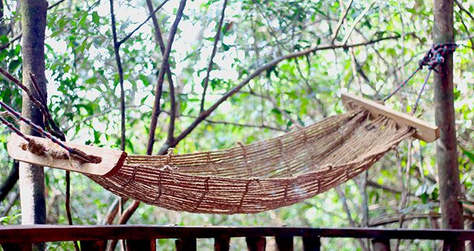 hammock at Tacugama Chimpanzee Sanctuary Sierra Leone by Dennis Jensen