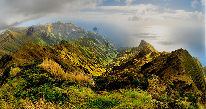 Gough Island Tristan da Cunha by Chantal Steyn
