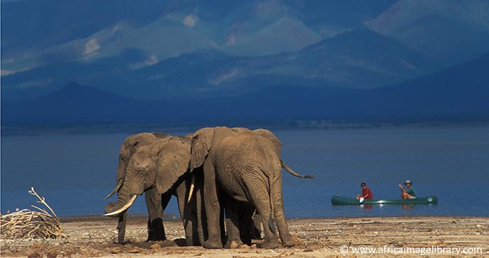 Canoe safari Lake Manyara Tanzania by Ariadne Van Zandbergen