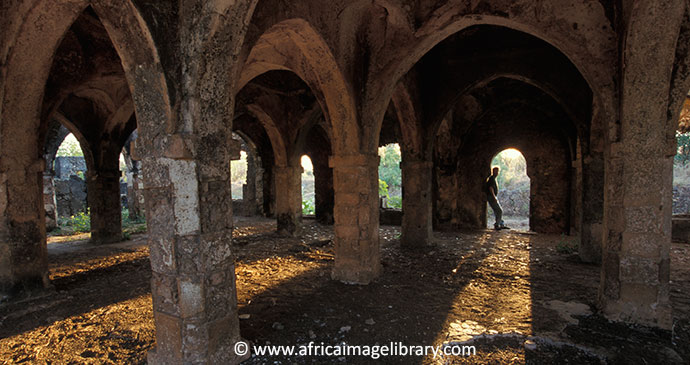 Great Mosque Kilwa Kisiwani Tanzania by Ariadne Van Zandbergen, Africa Image Library
