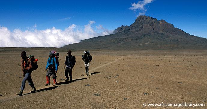 Mount Kilimanjaro Tanzania by Ariadne Van Zandbergen