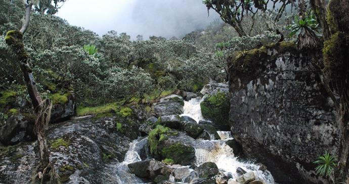 Waterfall at Rwenzori Mountains National Park, Uganda, Kombi Nation Tours