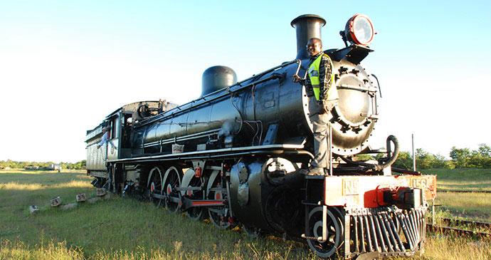 Livingstone Express Zambia by Tricia Hayne