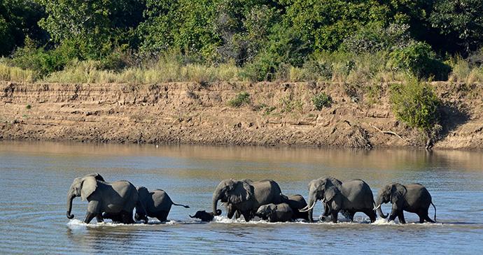 South Luangwa National Park Zambia by Geoff Gallice Wikimedia Commons