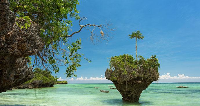 wild beach uzi island tanzania zanzibar shutterstock indian ocean