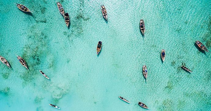 Fishing boats Zanzibar Tanzania Ocean Green Shutterstock Fish