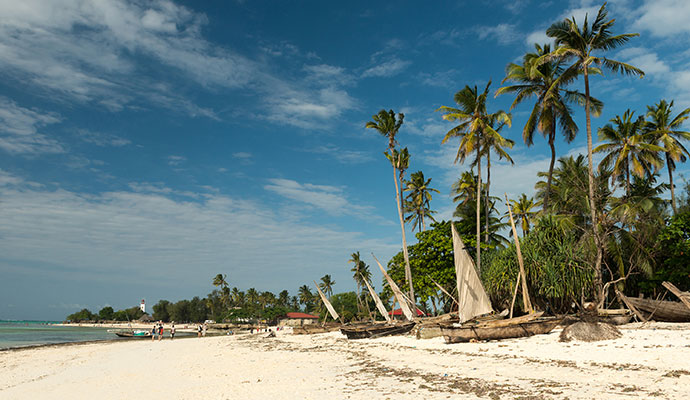 Wooden fishing boats zanzibar tanzania beach palm trees tatyana vyc shutterstock