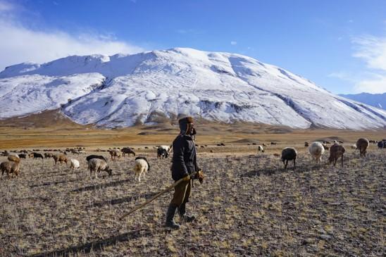Shepherd Little Pamis Afghanistan © Jonny Duncan