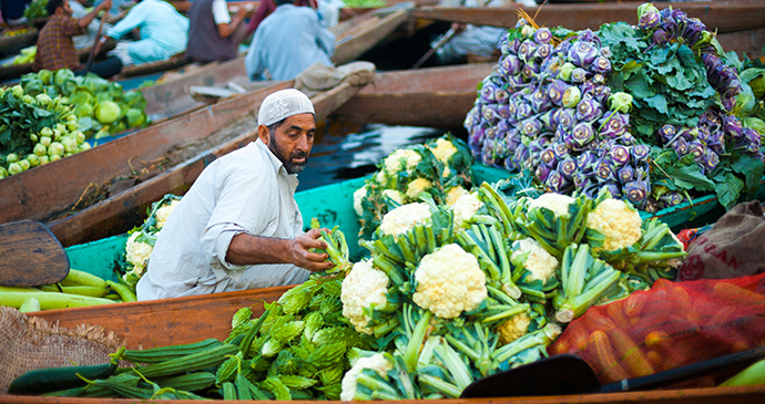 Floating Vegetable Market in Srinagar, Kashmir, India, Asia by Pius Lee Shutterstock