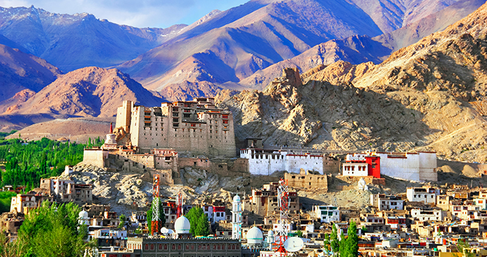 Namgyal Tsemo Gompa Ladakh India by Natalia Davidovich Shutterstock