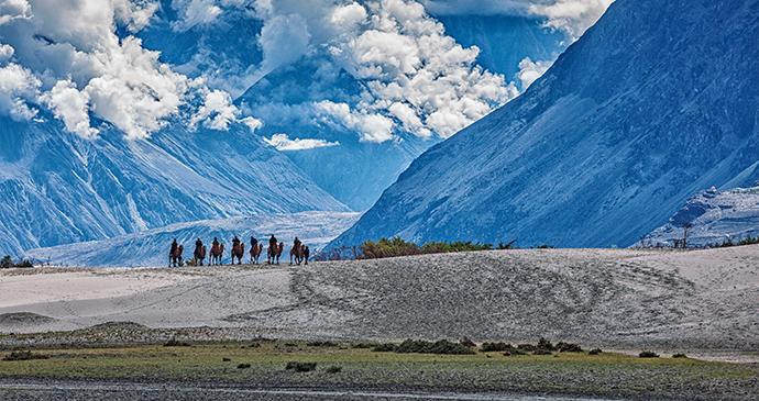 Nubra Valley Ladakh Dmitry Rukhlenko Shutterstock