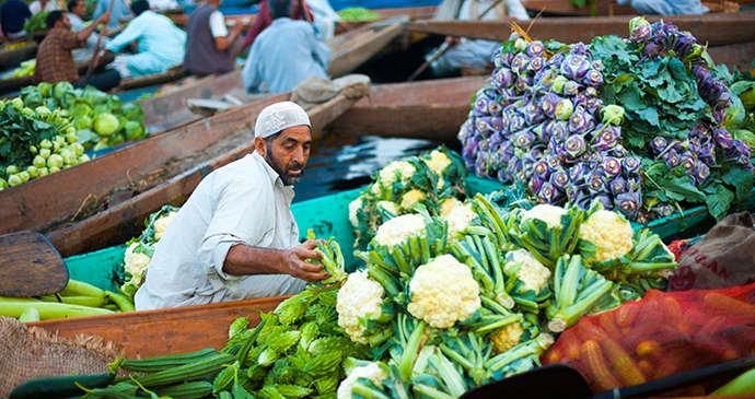 Floating market Dal Lake Srinagar Kashmir India Pius Lee Shutterstock