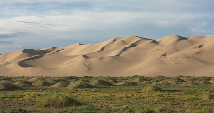Khongoryn Els sand dunes, Gobi Gurvansaikhan National Park, Mongolia by Zoharby, Wikipedia