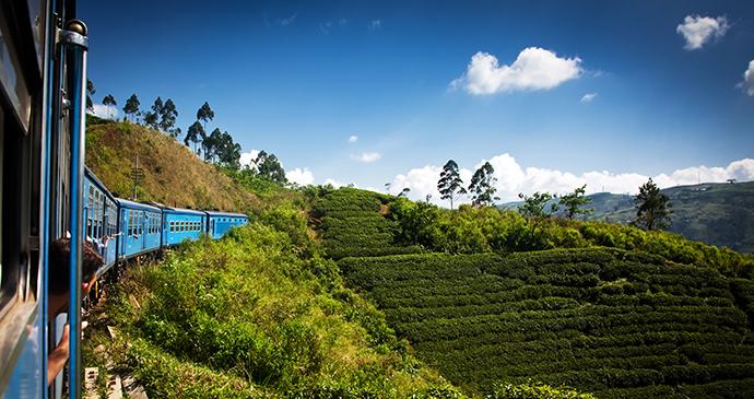 Train through tea plantation, Sri Lanka © TravelLocal