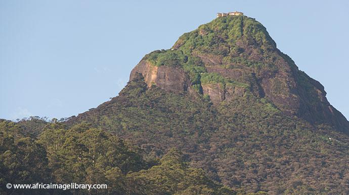 Adam's Peak Sri Lanka by Ariadne Van Zandbergen, Africa Image Library