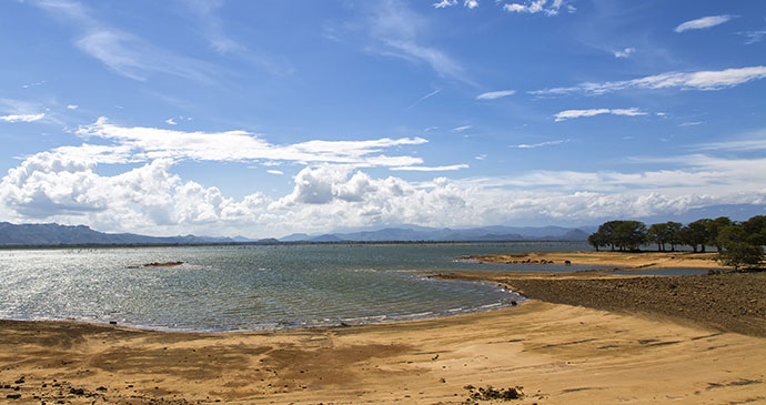 Udawalawe National Park Sri Lanka by Lee Dillon Shutterstock