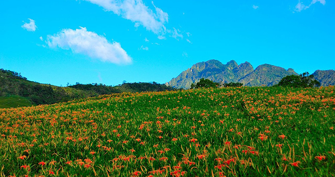 East Rift Valley Taiwan by 徐月春 Wikimedia Commons