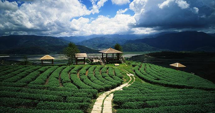 Taipingshan Taiwan by Taiwan Tourism