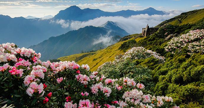 Taroko National Park Taiwan by higrace Shutterstock