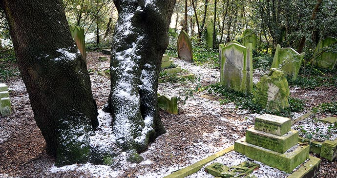 Old Barnes Cemetery London UK by Peter Arkell