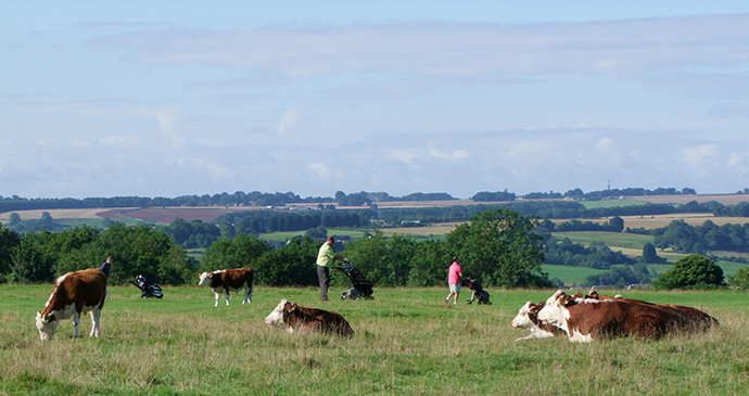 Michinhampton Common, Cotswolds, Days out, England by Caroline Mills