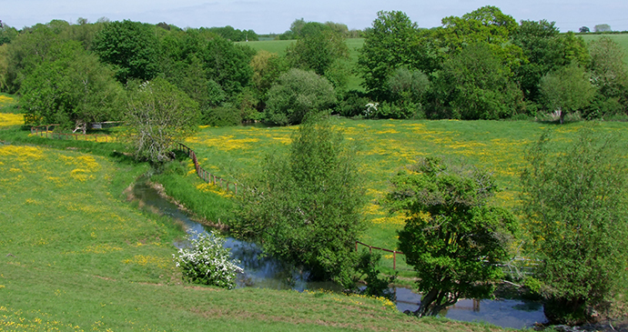 River Leach, Cotswolds, England by Caroline Mills