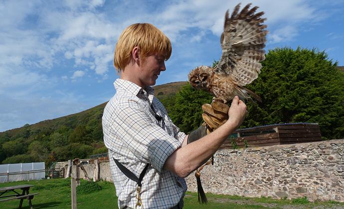 Hawk and Owl Centre, Exmoor, UK by @ExmoorNationalParkAuthority
