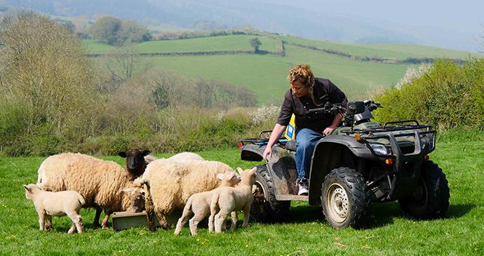 farming, Exmoor, UK by Julia Amies-Green