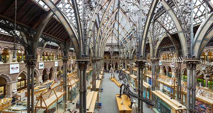 Pitt Rivers Museum Oxford UK by Diliff, Wikimedia Commons