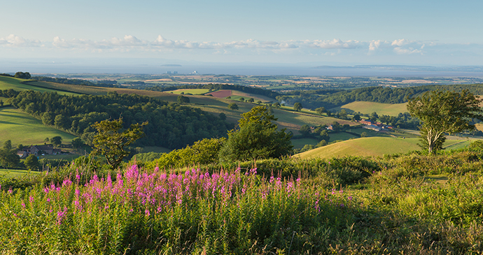 Quantock Hills Somerset by Mike Charles Shutterstock
