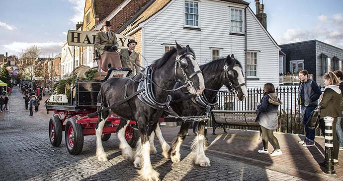 Shire horses, beer delivery, Lewes, Sussex, England by Xavier Dom Buendia