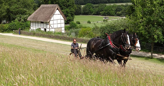 Weald and Downland Open Air Museum, Sussex, England by Weald & Downland Open Air Museum