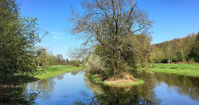 River Misbourne Chilterns by Timo Newton-Syms Wikimedia Commons