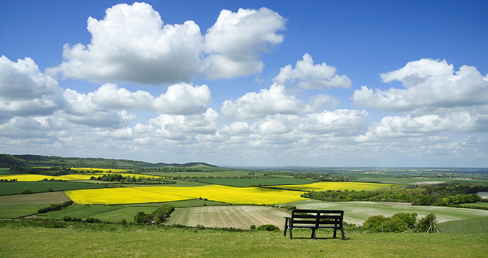Dunstable Downs The Chilterns England UK by Alina Wegher, Shutterstock