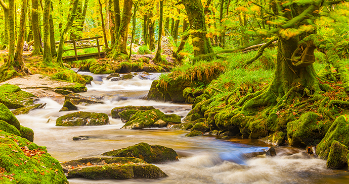 River Fowey Bodmin Moor Cornwall Enland UK by Mike Charles Shutterstock