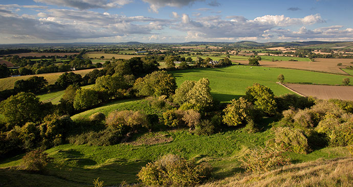 The Blackmore Vale, Dorset, England, British Isles © David Crosbie, Shutterstock