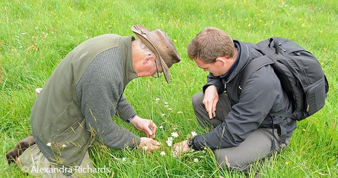 foraging, Dorset, England, British Isles © Alexandra Richards