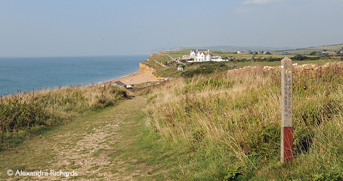 South West Coast Path Burton Bradstock Dorset England by Alexandra Richards