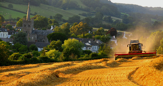 Harvest time in Sidbury © Heart of Devon