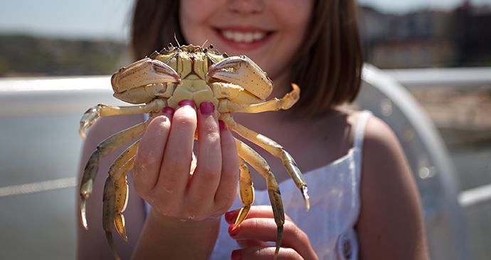 Crab & Lobster Festival, Norfolk by Chris Taylor